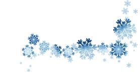 Schneeflockestern Stockfotografie