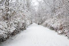Schneegasse Lizenzfreie Stockfotos