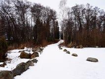 Schneegehweg Stockbild