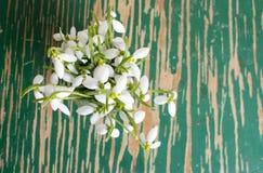 Schneeglöckchen in einer Glasschale auf einer Tabelle Stockfotografie
