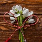 Schneeglöckchen und rote und weiße Schnur Stockfoto
