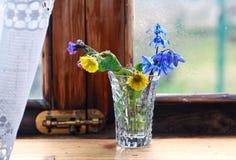 Schneeglöckchenblumen in einem Fenster im Frühjahr Lizenzfreies Stockbild
