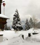 Schneejahreszeit. Stockbild