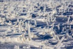Schneekristalle auf Gras am kalten Wintermorgen stockfotos