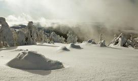 Schneeland Stockbild