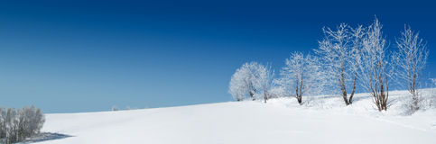 Schneelandschaft stockfotos