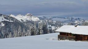 Schneelandschaft und alte Bauholzhütte Lizenzfreie Stockfotografie