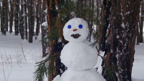 Schneemann in einer Kiefer Forest Standing Outdoors stock video