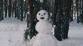 Schneemann in einer Kiefer Forest Standing Outdoors stock video footage