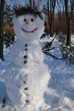 Schneemann im Park Stockbild