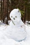 Schneemann im Wald des Heiligen Blaise Lizenzfreies Stockfoto
