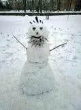 Schneemann mit einem Bart Stockfotografie