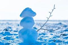 Schneemann mit gefrorener Niederlassung Stockbild