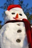 Schneemann mit Hut, Karottewekzeugspritze Stockbilder