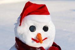 Schneemann mit Hut, Karottewekzeugspritze und Schal Lizenzfreie Stockfotos