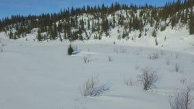 Schneemobil fahrung auf dem gefrorenen Seeufer stock video