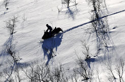 Schneemobil fahrung in der Wildnis Lizenzfreie Stockfotografie