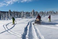 Schneemobil fahrung im Wald Stockfotografie