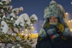 Schneemodell stockfotos