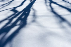 Schneemuster Schatten von Bäumen auf der Schneeoberfläche Stockfotografie