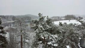Schneenaturlandschaft Stockbild