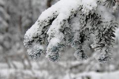 Schneeniederlassung Stockfoto