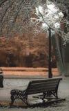 Schneepark mit einer bequemen Bank, beleuchtet einer Laterne Stockfotos