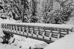 Schneepfad Stockfotografie