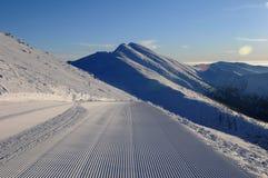 Schneepflegenmaschinenspuren Stockfotografie