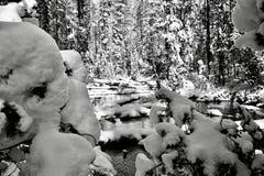 Schneerahmen Stockbild