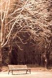 Schneeregen nachts Stockbild