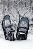 Schneeschuhe im Schnee Stockbilder