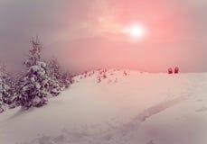 Schneeschuhe im Schnee auf den Bergen Fantastische Landschaft, die durch Sonnenlicht glüht Winter mit Kiefernwald Stockfoto