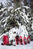 Schneeschuhe und ein Rucksack Lizenzfreie Stockbilder