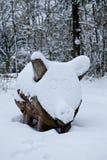 Schneeschwein Lizenzfreie Stockbilder