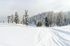 Schneeskipiste im Skigebiet über Lattea Italien Lizenzfreie Stockfotos