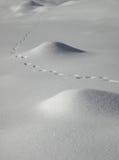 Schneespuren Stockbild