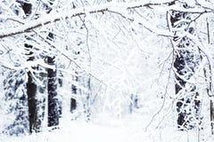Schneestraße Lizenzfreie Stockfotografie