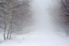Schneestraße im Nebel Stockbild