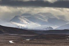 Schneesturm über den Cairngorm-Bergen von Dava Moor in Schottland lizenzfreie stockbilder