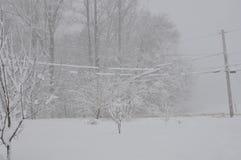 Schneesturm Stockbild