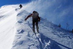 Schneesturm Stockfotografie