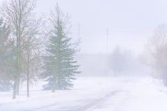Schneesturm auf einer Landstraße im Tageslicht stockbilder