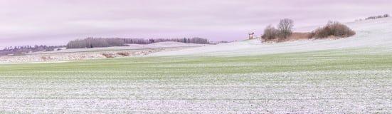 Schneesturm auf einer Landstraße im Tageslicht Lizenzfreie Stockfotos