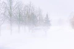 Schneesturm auf einer Landstraße im Tageslicht stockfotografie