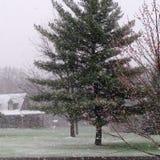 Schneesturm-Blizzard im Frühjahr Lizenzfreie Stockfotografie