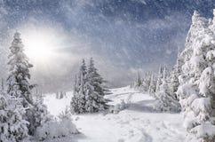 Schneesturm in den Bergen Lizenzfreie Stockfotos
