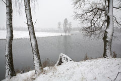 Schneesturm an der Natur Stockfotografie