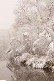 Schneesturm im Spätfrühling Stockfotografie