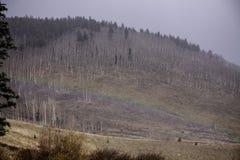 Schneesturm Regenbogen bei 10000 Fuß Stockbilder